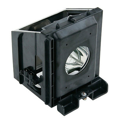 Compatible for Samsung HLR5067WX/XAP (Type1) HLR5667W (Type1) TV Lamp w/Housing