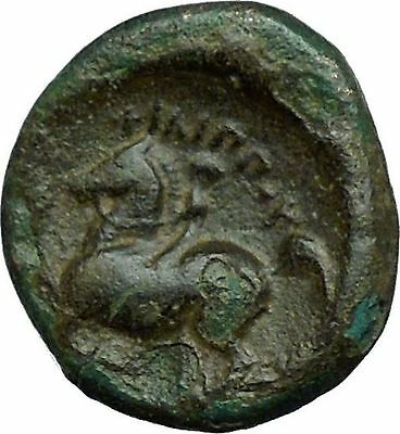 Philip II Alexander the Great Dad OLYMPIC GAMES Ancient Greek Coin Horse i34279