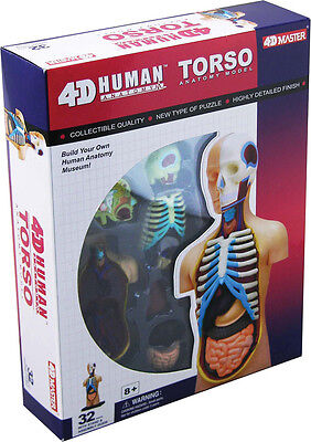 Female Reproductive  System  HUMAN ANATOMY MODEL,4D Kit #26062 TEDCO TOYS