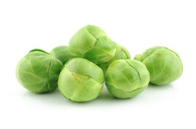 BRUSSELS SPROUTS Long Island' 150 seeds vegetable SEEDS garden winter vegie