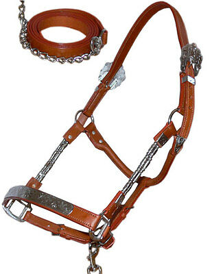 NEW Full Western Show Halter in Tan Leather & Silver with Matching Chain & Lead