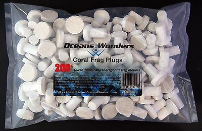 200 Cured Reef Plugs For Live Coral Frag Propagation