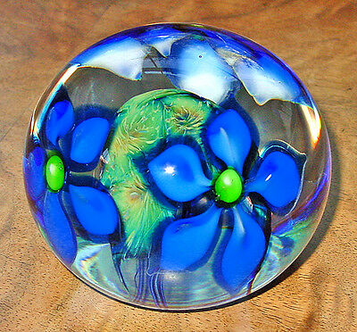 Signed David LOTTON MEDIUM BLUE CLEMATIS Cased Floral Art Glass Paperweight