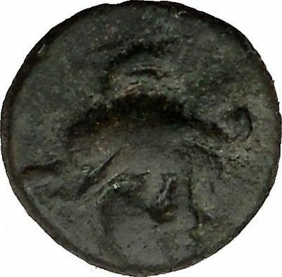 TROY Site Rare Authentic Ancient Greek Coin of ILION in TROAS 27BC ATHENA i36804
