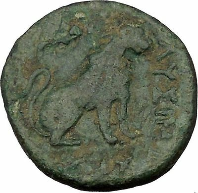 Lysimacheia in Thrace 309BC Ancient Greek Coin LION APOLLO Healer Cult   i36864