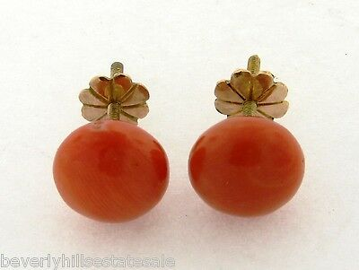 Antique Victorian 18k Yellow Gold Coral Cabochan Earrings