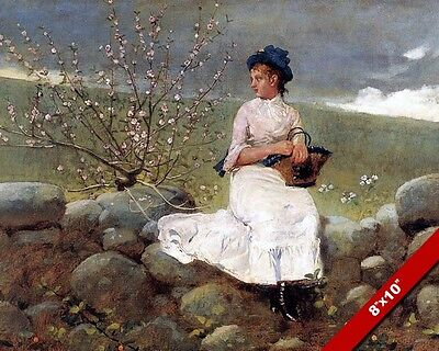 Girl On Wall Blossoms Tree Winslow Homer Fine Art Real Canvas Giclee 8X10Print