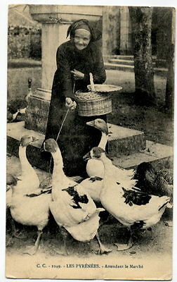T2543 ETHNIC FRANCE WOMAN GOING TO MARKET WITH GEESE 1914  POSTCARD