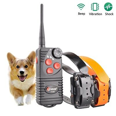 Waterproof 550m Remote Control Pet Dog Training Electric Shock Collar For 2 Dogs