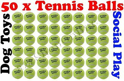 50 x Tennis Balls Coloured Bright Green For Pets Play / Dog Toys Bouncing Ball