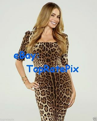 SOFIA VERGARA  -  Modern Family Minx  -  8x10 Photo #4