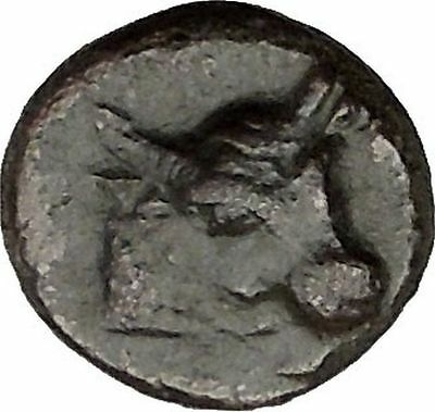 PANTIKAPAION in TAURIC CHERSONESOS 250BC Bull Plow Ancient Greek Coin i38355