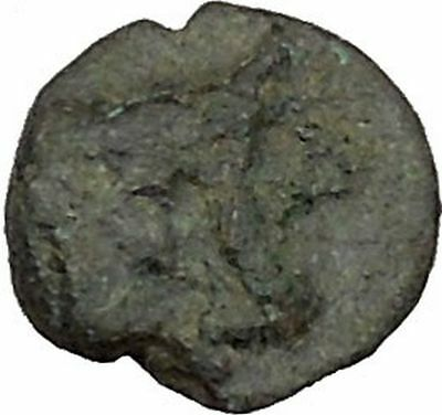 PANTIKAPAION in TAURIC CHERSONESOS Rare250BC Bull Star Ancient Greek Coin i38362