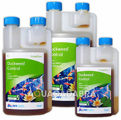 Nt Labs Cristalclear Duckweed Control Reduce Garden Fish Pond Treatment Koi