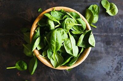 BABY SPINACH 60+ seeds baby salad leaves EASY TO GROW winter vegetable garden