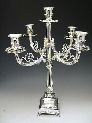 Candelabra 5 Branch, Silver Plated, Height: 20.5""