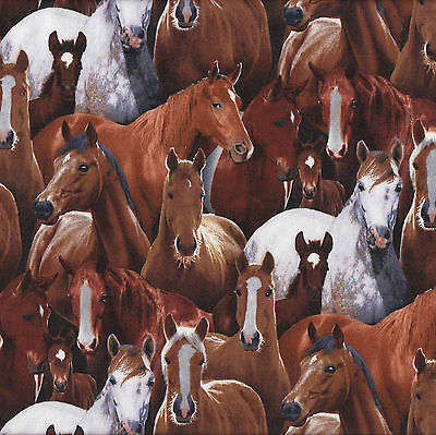 Brown Grey Horses Farm Animal Country Pony Foal Quilt Fabric FQ or Metre NEW