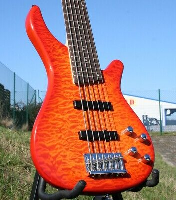 Acepro Edel- E Bass 6-Saiter Aktiv, Quilted Maple Top, Ahorn-Hals, Linde Body Am