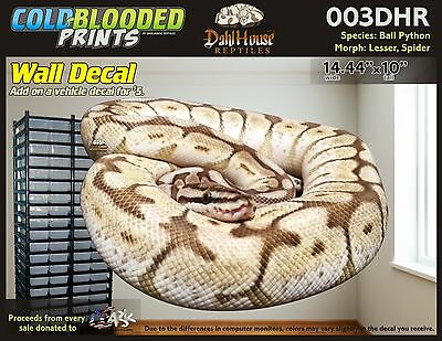 Snake Decal C367 Poster /& Sticker