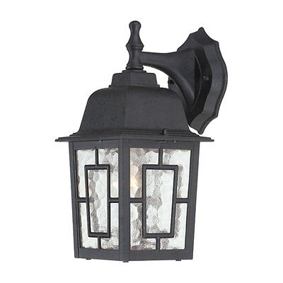 Nuvo Lighting 60-4923 Banyan 1 Light 12-in Outdoor Wall Sconce w/Clear Water Gla