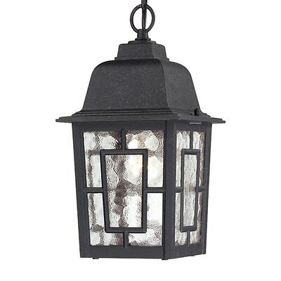 Nuvo Lighting 60-4933 Banyan 1 Light 11-in Hanging Outdoor Pendant w/Clear Water