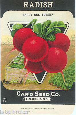 VINTAGE SEED PACKET ADVERTISING GENERAL STORE GARDEN LITHOGRAPH EARLY RED TURNIP