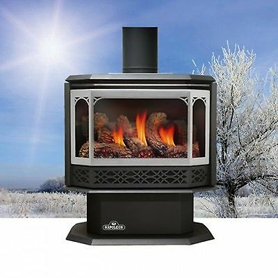 Napoleon BGNV40N4 Island Vent Free Natural Gas Fireplace