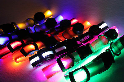 7 Colors LED Dog Pet Light Flashing Safety Collar + FREE Wooden Tag Id