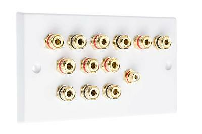6.1 White Speaker Audio Wall Face Plate Non Solder
