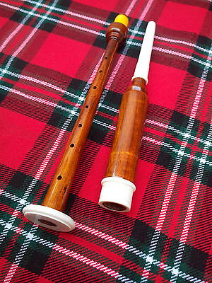 Scottish Bagpipe Wood Practice Chanter With 2 Reeds - ROSEWOOD