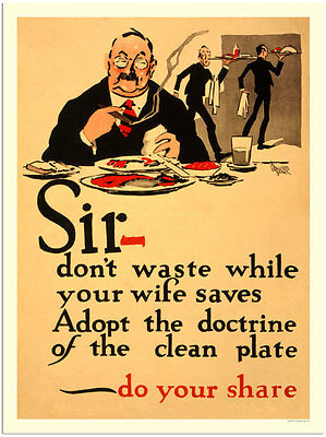 Sir - Don't Waste  -  Wartime Poster