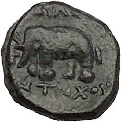 Antiochos III, (Molon) the Great  223BC RARE Ancient Greek Coin Elephant  i40655