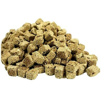 Tubifex Worms--Freeze Dried in Cubes, Bulk Tropical Fish Foods