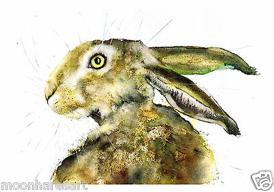 Original Watercolour  Hare Painting Print  By Moon Hares Art Paintings & Prints