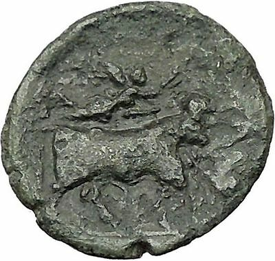 NEAPOLIS in CAMPANIA 270BC Nike Apollo Man-Headed Bull Ancient Greek Coin i40776