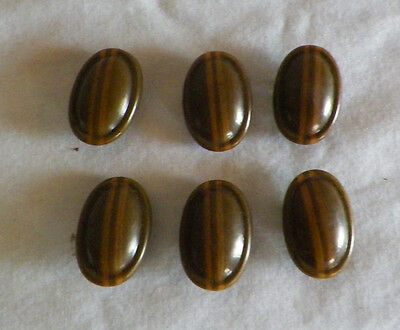Vintage Celluloid Buttons Lot Of Six (6) Brown Oval