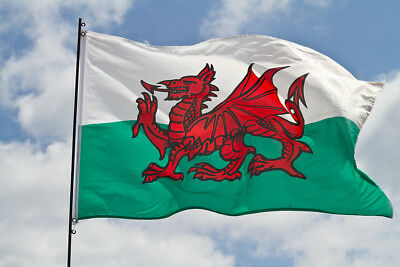 Giant National Wales Welsh Dragon Cymru Rugby 6 Nations Flag St Davids Day