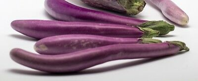 EGGPLANT 'Ping Tung' 30+ seeds ASIAN VEGETABLE garden aubergine heirloom PURPLE