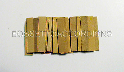 Accordion REED LEATHER LEATHERS VALVES SET OF 36 Size 7 Ventile für Akkordeons