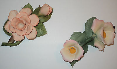 Capodimonte Flowers~Set of Two Peach Flowers~Sweetbrier & other~Made in Italy