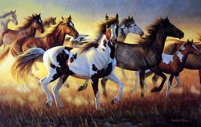 "Cynthie Fisher ""Wild Fire"" Horse Print 12"" x 7.75"""