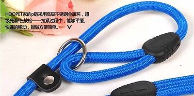 PF PET P CHAIN DOG TRAINING PREPARED WITH HIGH-QUALITY NYLON TRACTION Blue