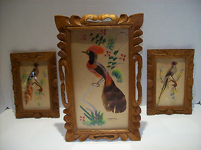 Vintage Set Of 3 Watercolor & Feather Paintings Of Exotic Birds/Made In Mexico