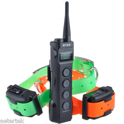 Serious Stubborn Pet Dog Electric Training Shock Two Collar 1000M Remote Sport
