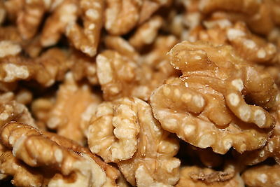 Bayside Candy-3-Pounds-RAW-SHELLED-PREMIUM-WALNUTS-FREE SHIPPING