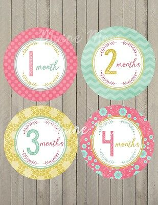 Baby Monthly Milestone Month Stickers Shower Gift Nursery Decor Sticker Photo