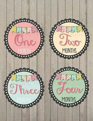 Monthly Baby Girl Stickers Month Milestone Banner Bunting Gift Photo Prop Gift