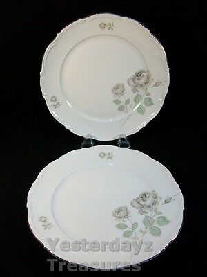 "A Fabulous Pair of 10"" Dinner Plates by Mitterteich Bavaria Pattern: Mystic Rose"