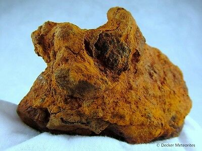 °Dronino~Iron Meteorit~369.80~Ataxit~Top Rare Iron Shale Fragment From Russia°
