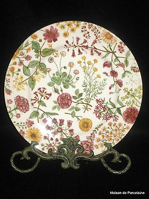 6 Royal Stafford HEDGEROW Wildflower Floral Dinner Plates Made in England